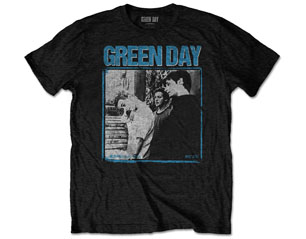 GREEN DAY photo block TS