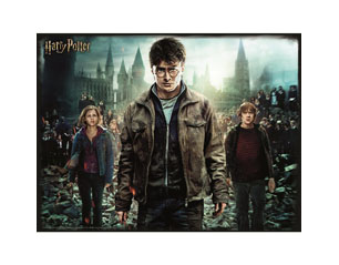 HARRY POTTER harry hermione and ron 3d 300 piece PUZZLE