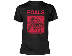 FOALS everything not saved TS
